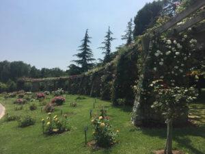 Парк Сервантеса